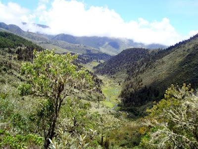 Imagen de Los Andes venezolanos