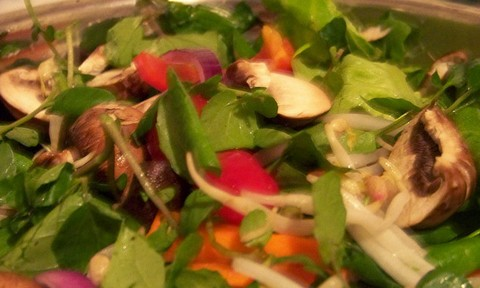 Cold and Colorful Salad with Sprouts Mushrooms and Carrots