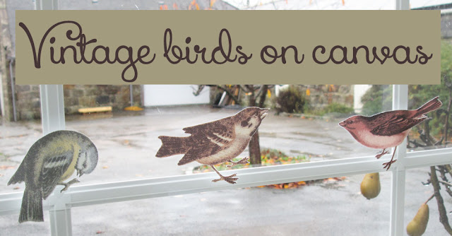 Vintage birds on printable canvas for home decor