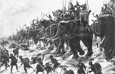 gajah tempo dulu, sahabat sultan  sekarang jadi buruan