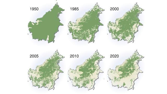 Laju Deforestasi Hutan Kalimantan