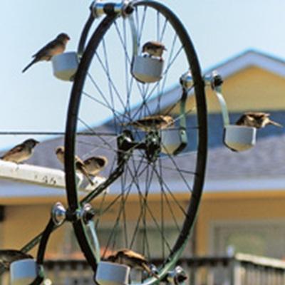 Sepeda bekas yang dimodifikasi jadi pemberi makan burung. Tempatkan pemberi makan ini di halaman belakang untuk melihat burung-burung berdatangan ke halaman rumah kita.