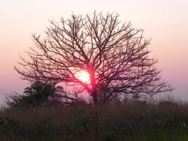 Solen går upp eller ned