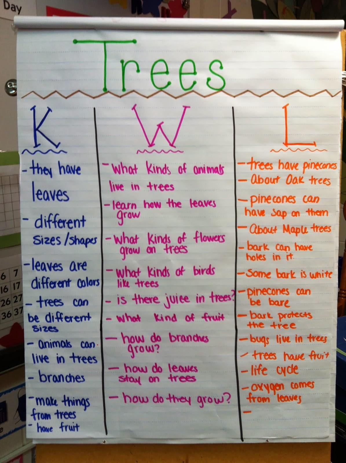 Mrs Kurt S All Star Kindergarten Blog Trees