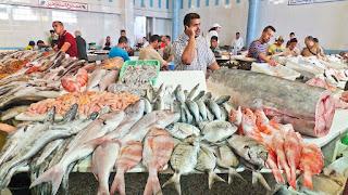 فيما يلي نبرز انواع الاسماك الموجودة في رفراف الشاطئ المهاجرة والغير مهاجرة