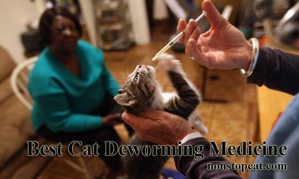 Best Cat Deworming Medicine