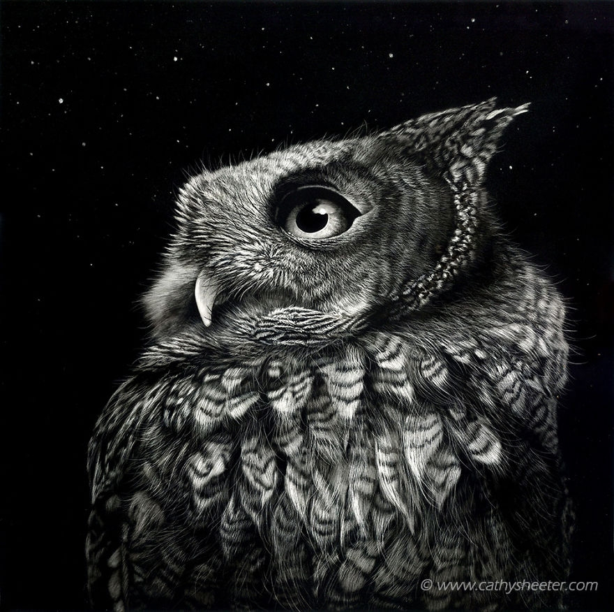02-Owl-Sounds-in-the-Night-Cathy-Sheeter-Hyper-Realistic-Scratchboard-Wild-Animal-Drawings-www-designstack-co