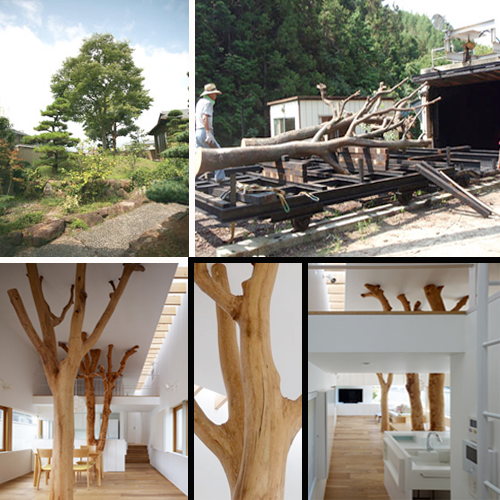 Garden Tree House en Japón