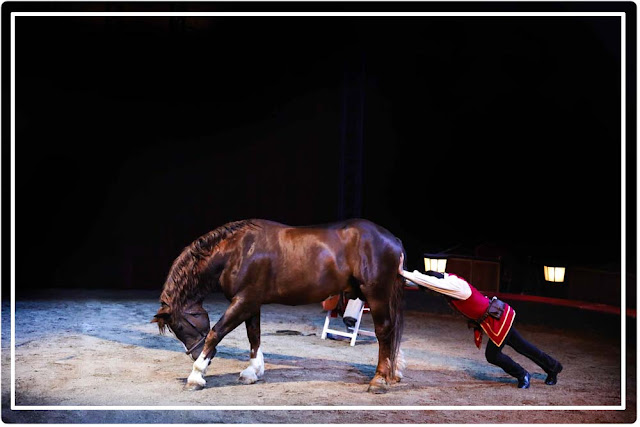tableau comique cirque équestre Origines d'Alexis Gruss