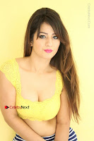 Cute Telugu Actress Shunaya Solanki High Definition Spicy Pos in Yellow Top and Skirt  0169.JPG