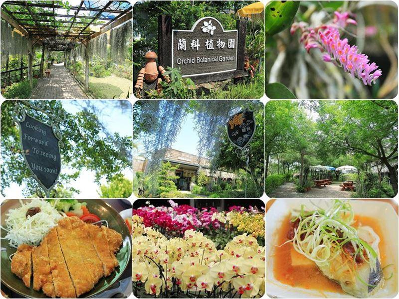 蘭科植物園|珍奇蘭種保育區