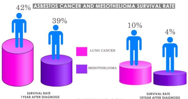 An asbestos Amphibole and Mesothelioma Statistic
