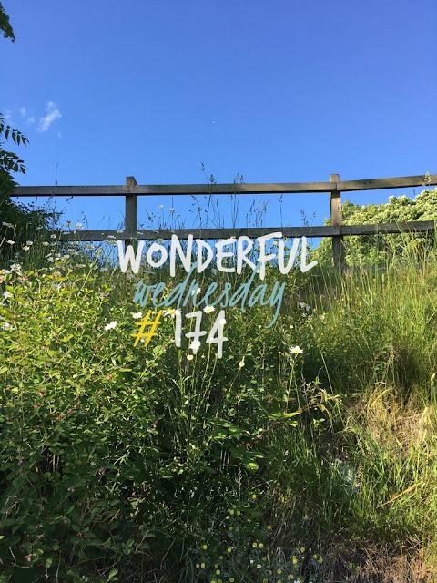 Wonderful Wednesday #174