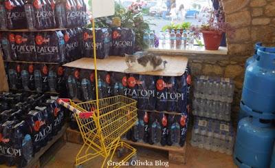 kot w supermarkecie na zgrzewkach wody