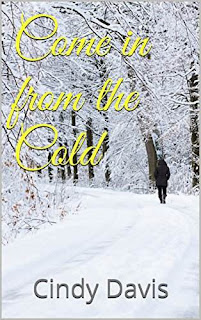 Come in from the Cold - romantic suspense by Cindy Davis