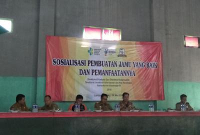 Ratusan Masyarakat Desa Rajabasa Lama Ikuti Sosialisasi Pembuatan Jamu dan Manfaatnya