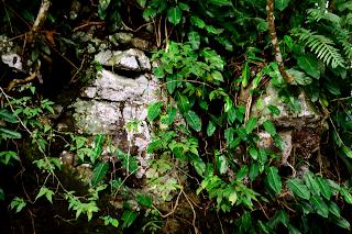 Ancient Megaliths at Rio Viejo