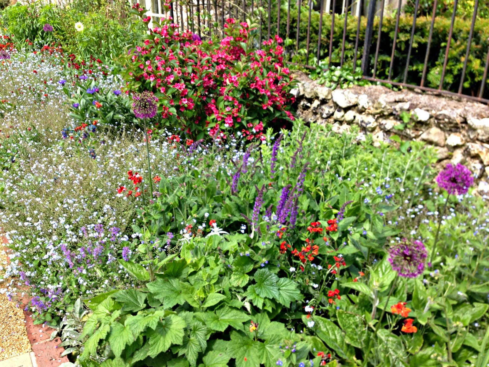 Flowers in the gardens at Lewes Castle