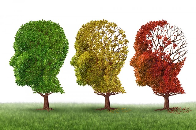 10 señales para detectar a tiempo el Alzheimer