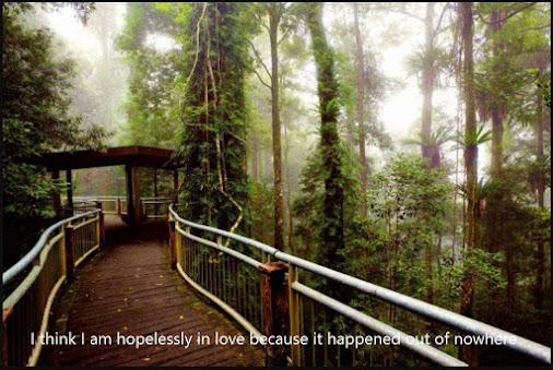 I think I am hopelessly in love because it... - #livinMicro #FairlyAdept #soWrongItsWrite #I #think ...