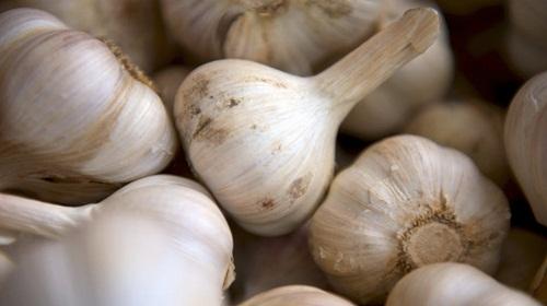 Cara Menghilangkan Jerawat Dengan Bawang Putih