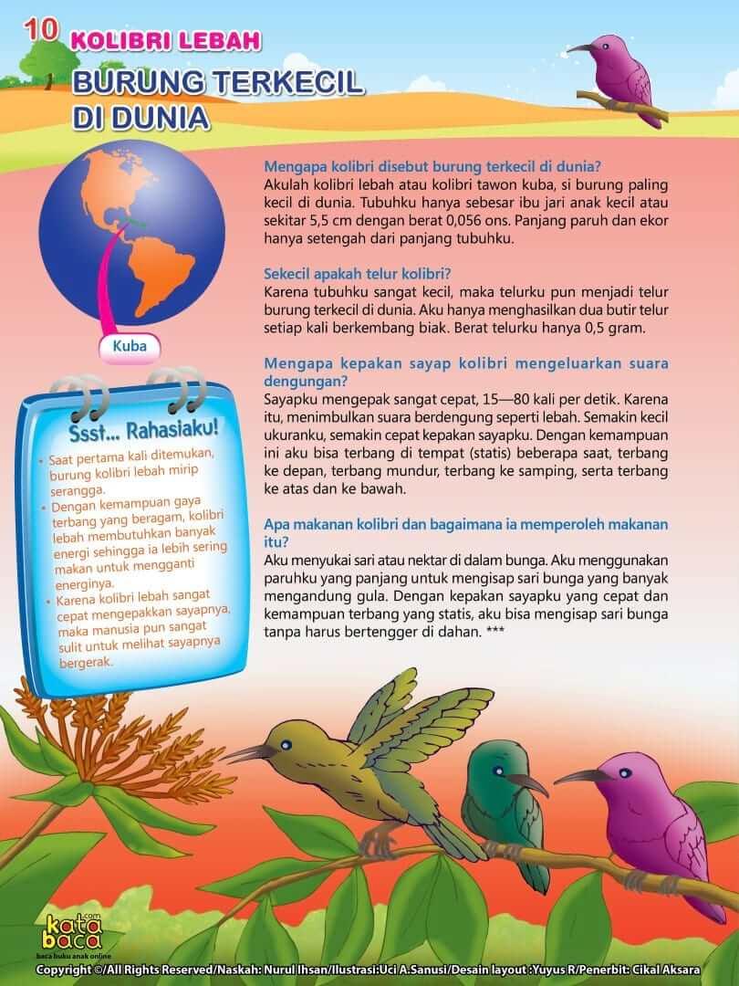 Burung Kolibri Lebah - Burung Terkecil di Dunia