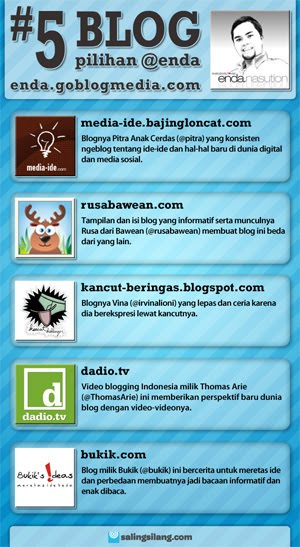 irvinalioni blogger