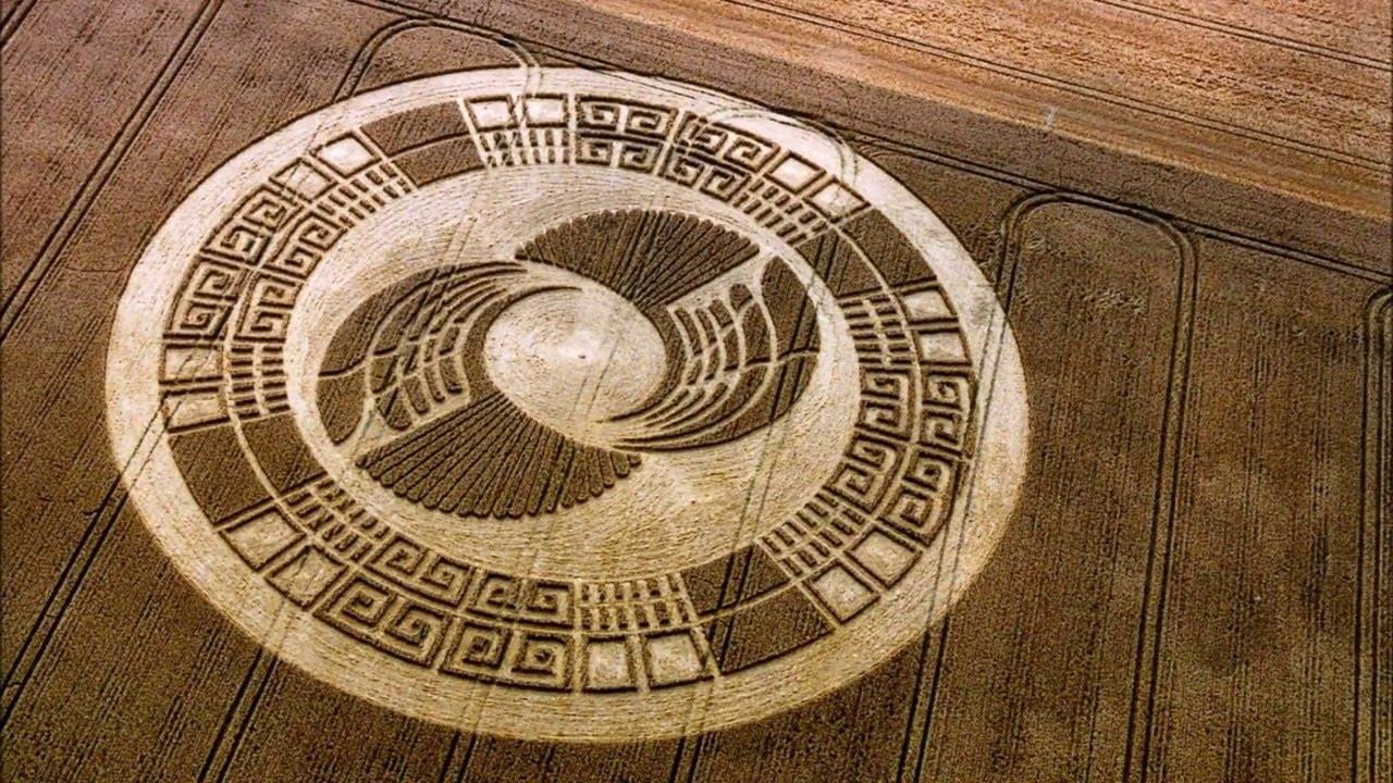 Científico y Ph.D afirma que los Crop Circles son mensajes extraterrestres del futuro