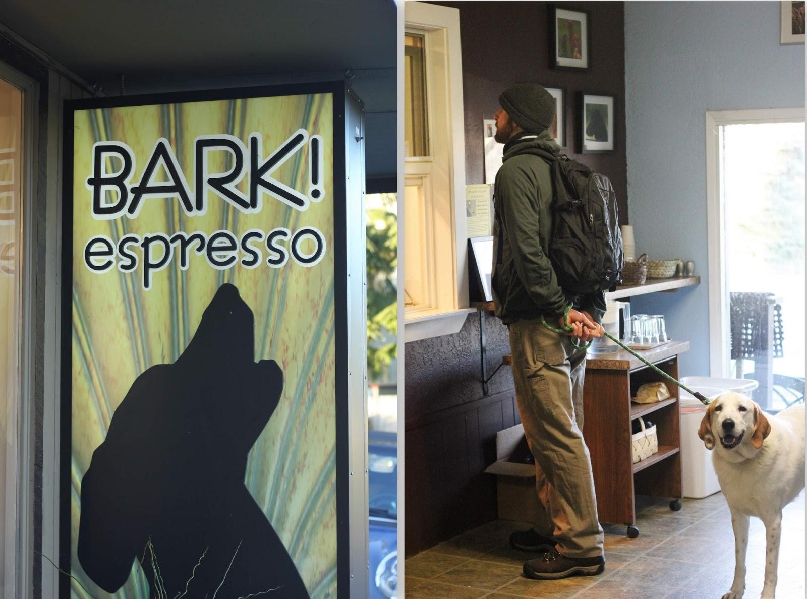 Traveling Light: bark espresso