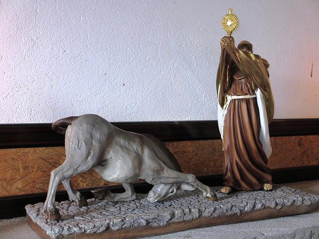 Hasta las mulas se arrodillan ante Jesús Sacramentado