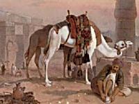 Imam Junaid Pekerja Keras dan Sayyid Abu al-Hasan al-Syadzili yang Kaya