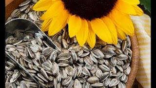 superalimentos curativos semillas girasol para acida pelo