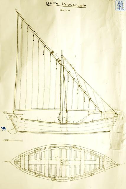Le Chameau Bleu -Blog Voyage Var Brusc - Plan de la Bette provencale