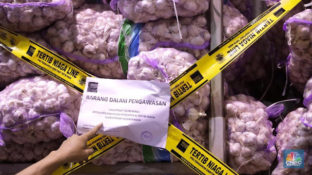 5 Fakta Impor Bawang Putih RI, Raja Impor Terbesar di Dunia