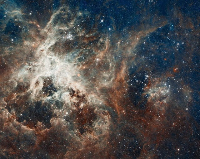 Overabundance of massive stars in the Tarantula Nebula