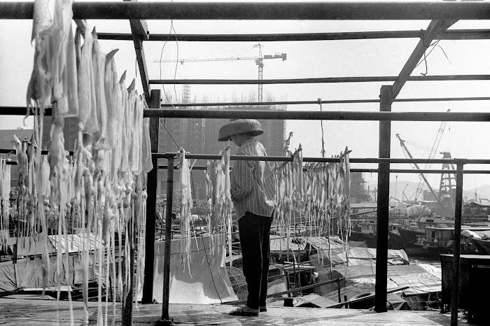 Hong Kong, Aberdeen, calmars, jonques, © L. Gigout, 1990