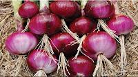 gambar bawang merah, bahasa arab bawang merah