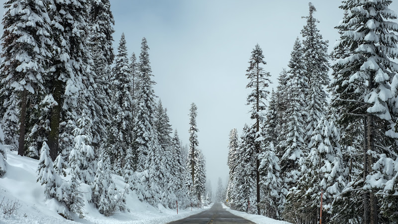 Winter on the Road to Shaver Lake