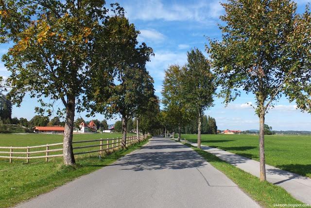 ヨーロッパの田舎道 European-country-road