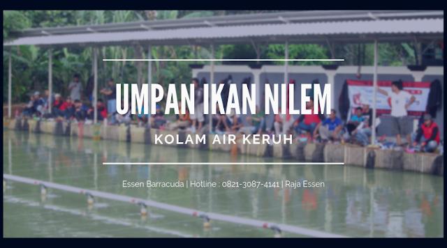 https://rajaessentsm.blogspot.com/2018/11/cara-buat-umpan-ikan-nilem-air-keruh.html