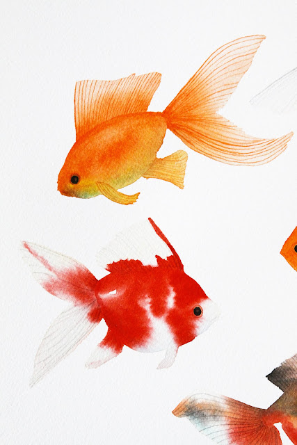 watercolor, watercolor goldfish, watercolor painting, goldfish painting, Anne Butera, My Giant Strawberry