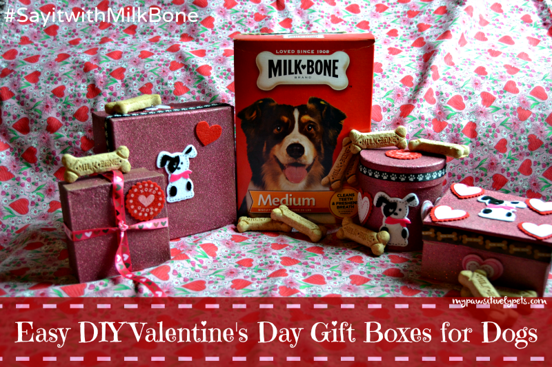 Easy DIY Valentine's Day Gift Boxes for Dogs #SayitwithMilkBone