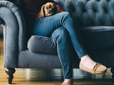 Lebih Memilih Anjing Daripada Suaminya, Wanita ini Justru Makin Bahagia Dengan Hidupnya