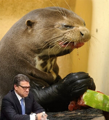 image of Rick Perry making a pouty face next to a giant otter eating watermelon and making an ick face