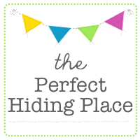 The Perfect Hiding Place