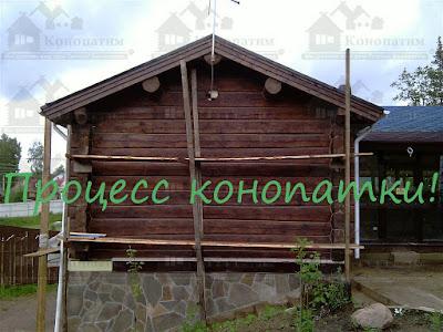 Конопатка сруба бани норвежской рубки в Новотоксово.