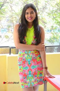 Telugu Actress Prasanna Stills in Short Dress at Inkenti Nuvve Cheppu Press Meet Stills  0029.JPG