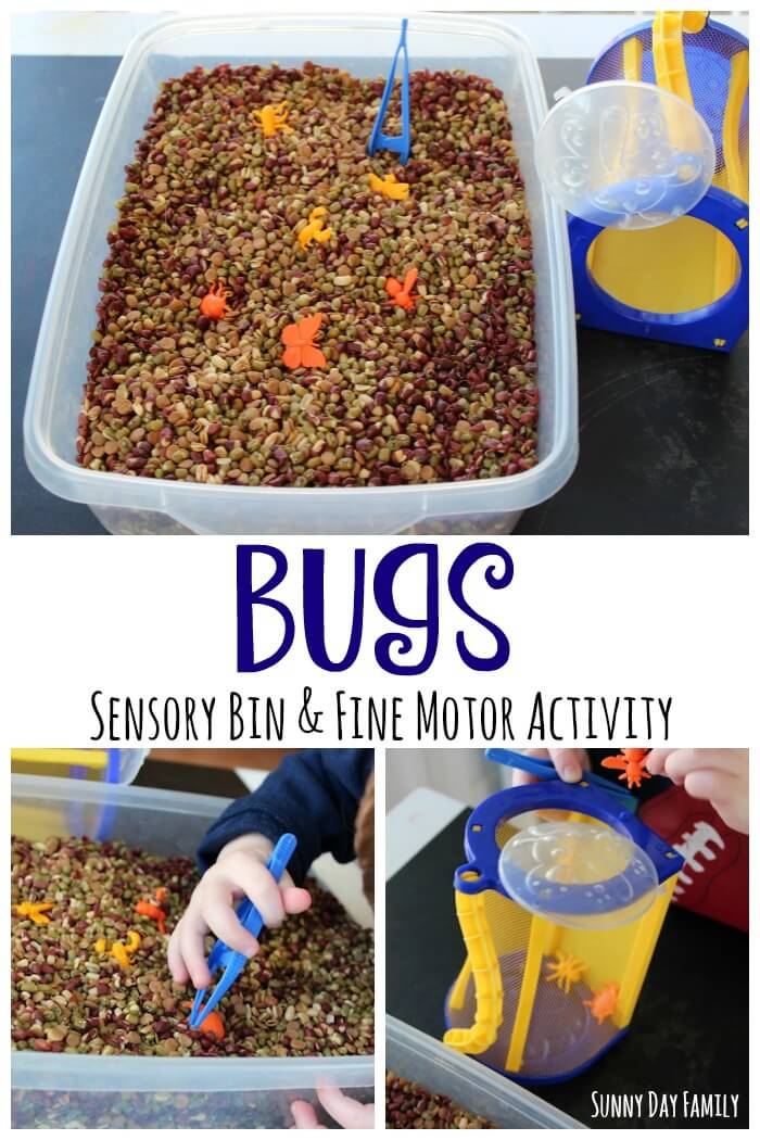 Bug sensory bin and fine motor activity for preschoolers! Toddlers and preschoolers will love exploring insects with this fun bug themed activity.