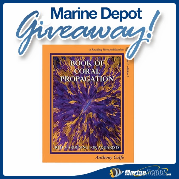 Coral Propagation: Win The Book Of Coral Propagation!
