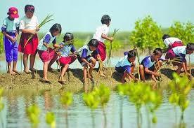 Usaha yang Perlu Dilakukan untuk Menjaga Kelestarian Alam